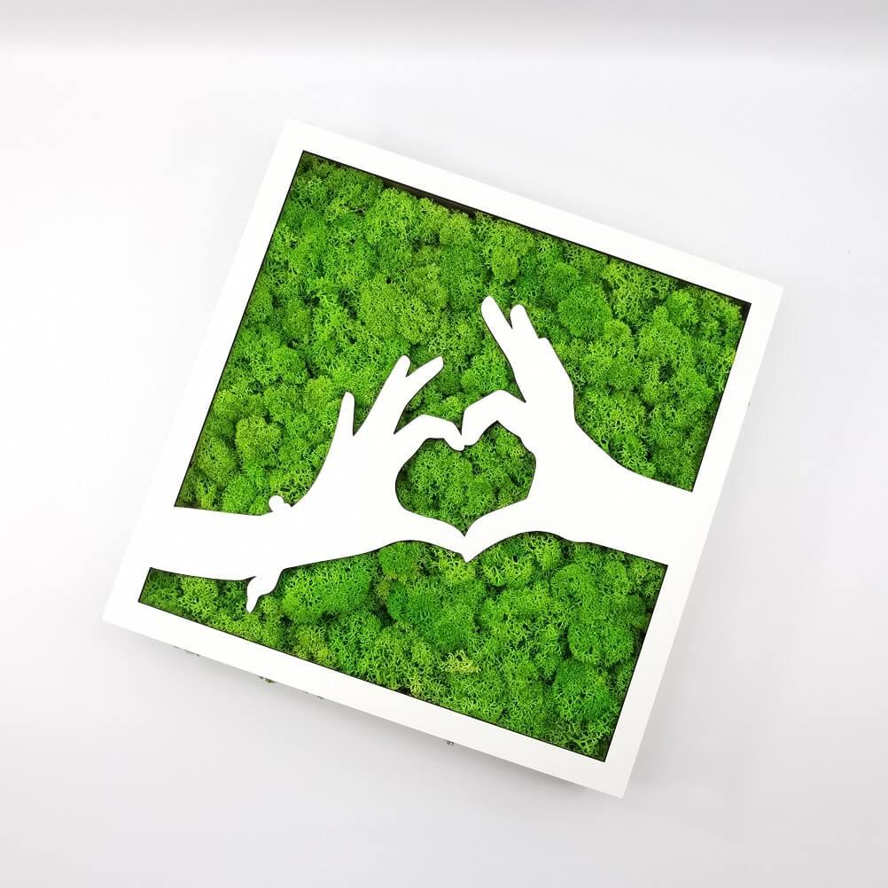 Tablou licheni - Love